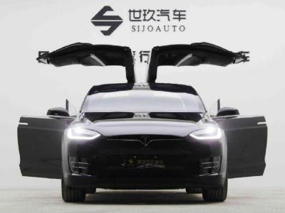 2018年6月 特斯拉 Model X Model X 75D图片
