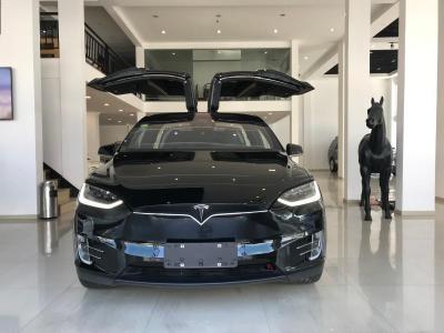 2017年10月 特斯拉 Model X  Model X 75D图片