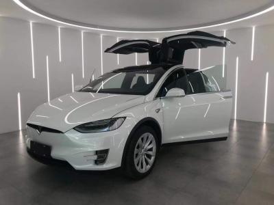 2019年11月  特斯拉Model X 75D 图片