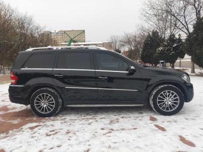 2010年11月 奔驰 奔驰GL级(进口) GL 450 4MATIC尊贵型图片