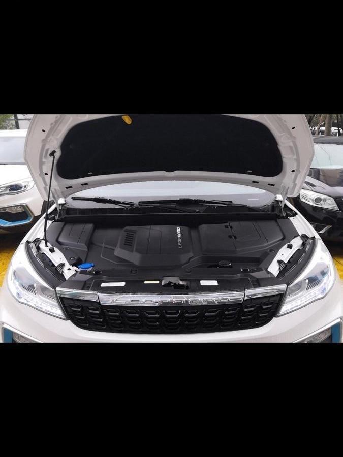 獵豹 獵豹CS9  2018款 EV300風尚版圖片
