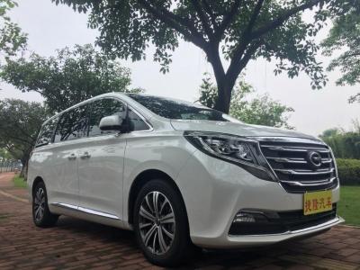 2019年1月 廣汽傳祺 GM8  320T 尊貴版圖片
