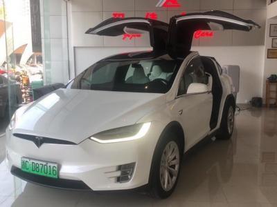 2018年7月 特斯拉 Model X Model X 100D 长续航版图片
