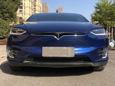 2019年7月 特斯拉 Model X Model X 75D图片
