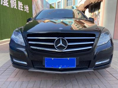 2011年1月 奔驰 奔驰R级(进口) R 300 L 商务型图片