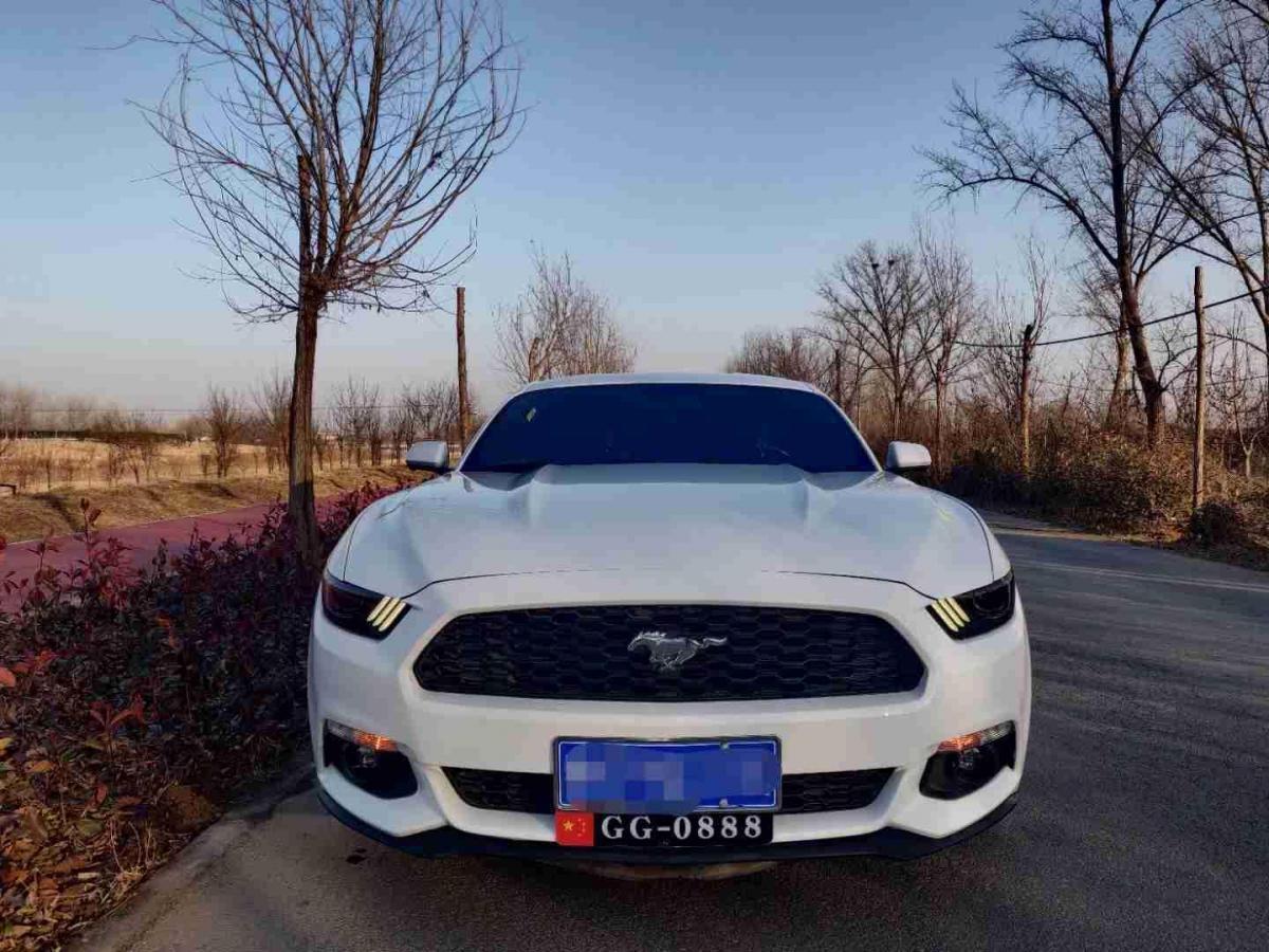 福特 Mustang  2016款 2.3T 运动版图片