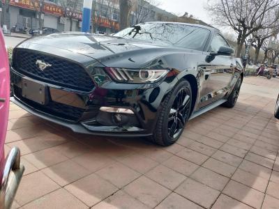 福特Mustang野马 手动 手动 手动 手动!!!!图片