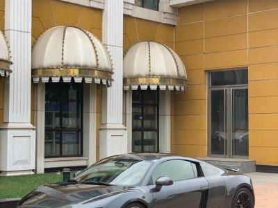 2010年12月 奥迪 奥迪R8 Spyder 5.2 FSI quattro图片