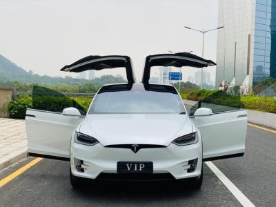 2019年9月 特斯拉 Model X Model X 75D图片