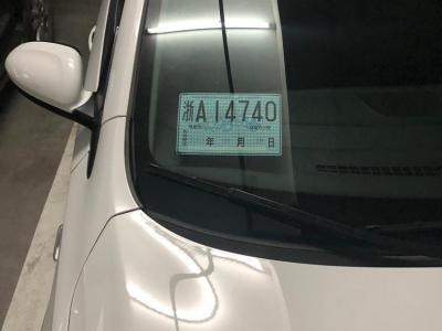2009年6月 中兴 旗舰A9 2.4T柴油超豪华型图片