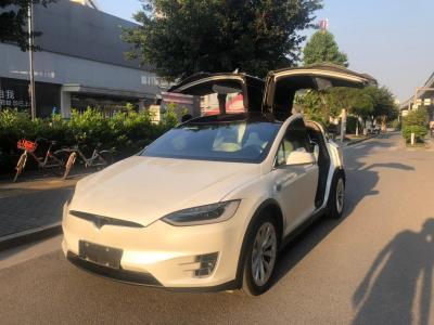 2018年8月 特斯拉 Model X Model X 100D 长续航版图片